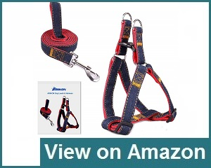 Arikon Dog Leash Pet Harness Review