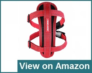 Ezydog Chest Plate Dog Harness Review
