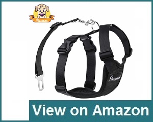 Pawaboo Dog Safety Vest Review