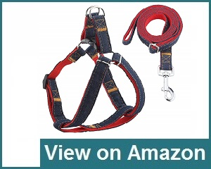 Urpower Dog Leash Harness Review