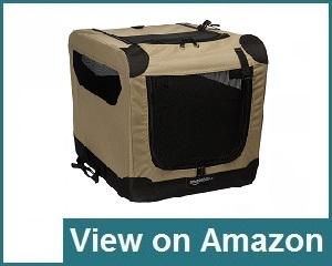 Amazon Basics Review