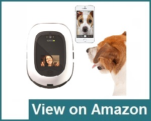 PetChatz HD 2 Way Pet Camera Review