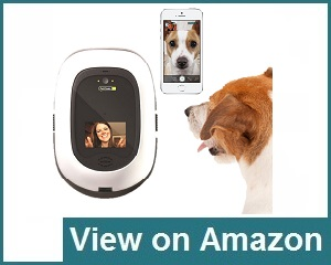 PetChatz Two-Way Dispenses Review