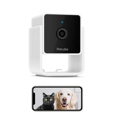 Petcube Cam Pet Monitoring Camera Review