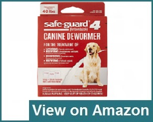 8in1 Safe Guard Canine Dewormer Review