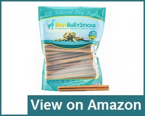 Best Bully Sticks Review