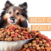 Top 10 Best Cheap Dog Foods in 2018 – Reviewed & Compared