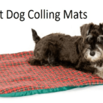 Top 10 Best Dog Cooling Mats in 2018 – Reviewed & Compared