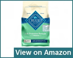 Blue Buffalo Life Protection Formula Review