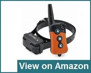 Ipets Pet619s Beep Vibrating Collar Review