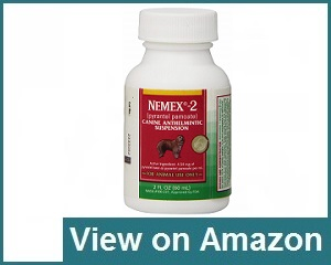 Nemex 2 Review