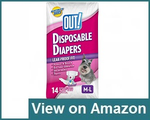 Out! Pet Care Diaper Review