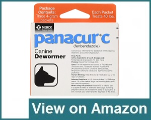 Panacur C Canine Dewormer Review