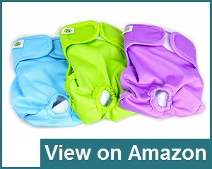 Pet Magasin Dog Diapers Review
