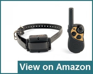 Petsafe Rechargeable Dog Training Collar Review
