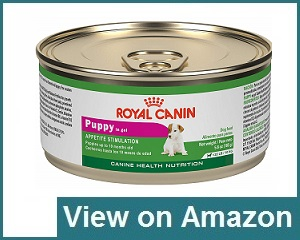 Royal Canin Wet Dog Food Review