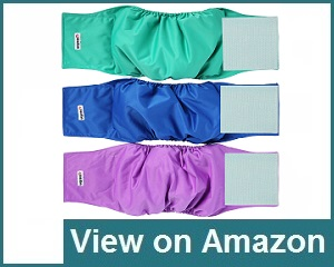 Wegreeco Washable Belly Wrap Review