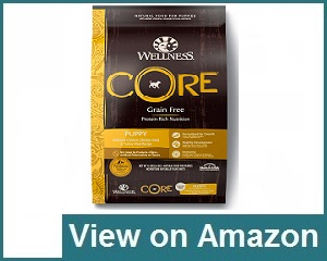 Wellness Core Puppy Food Review