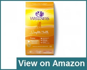 Wellness Puppy Food Review
