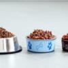 best dog food uk