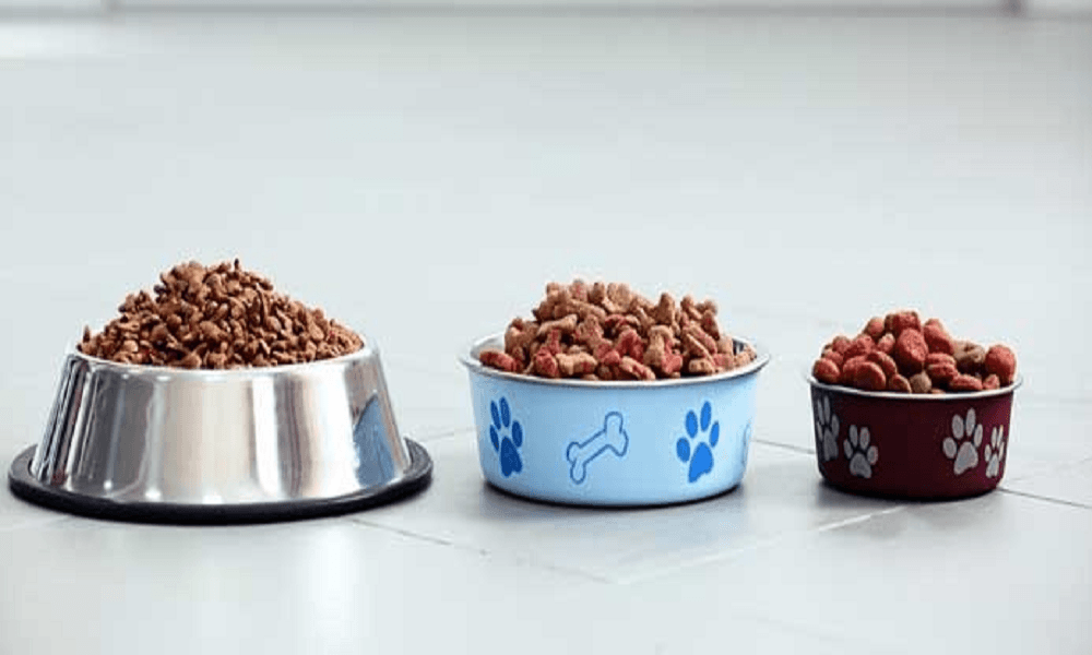 best dog food uk