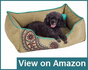 Blueberry Pet Bed Review