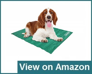 Coleman Comfort Pet Mat Review