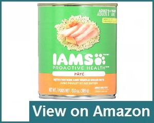 Iams Proactive Review