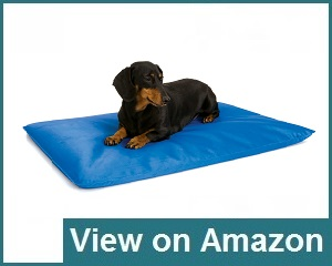 K&H Pet Products Cool Bed Review