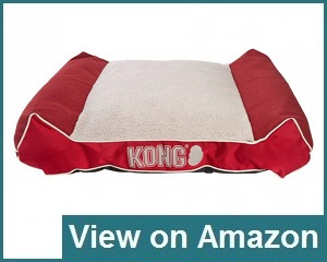 Kong Lounger Review