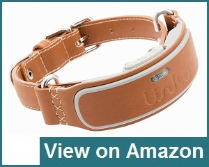 Link Akc Collar Review