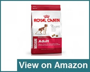 Royal Canin Medium Adult 15kg Review