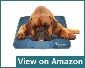 The Green Pet Shop Dog Cooling Mat Review