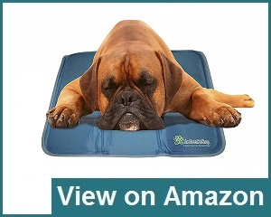 The Green Pet Shop Gel Pad Review