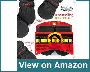 Ultra Paws Durable Boots Review