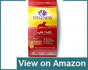 Wellness Senior Dog Food Review