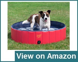 Frontpet Foldable Pet Pool Review