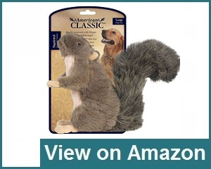 American Classic Squirrel Review
