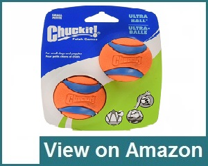 Chuckit! Small Ultra Ball Review