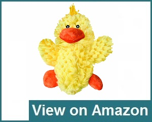 Kong Duck Dog Toy Review