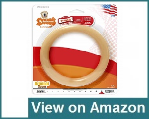 Nylabone Ring Dura Chew Dog Toy