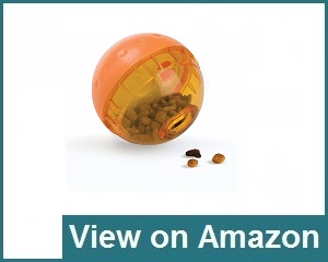 Our Pets Iq Treat Ball Interactive Review