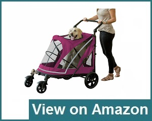 Pet Gear Multiple Dogs Review