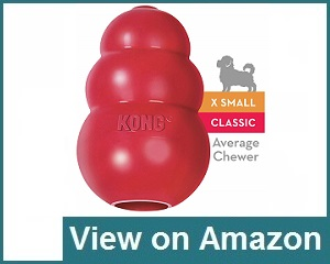 Kong Classic Rubber Chew Dog Toy Review