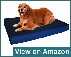 Dogbed4less Premium Review