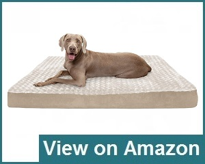 Furhaven Bed Review