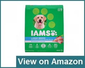 Iams Large Breed Dog Food Review