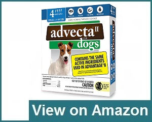 Advecta II Flea Medicine Review