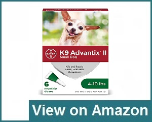 Bayer Advantage II Flea Medicine Review