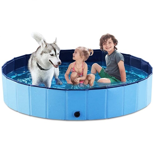Dog Swimming Pool Review